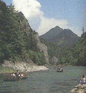 Rafting on river Dunajec(17549 bytes)